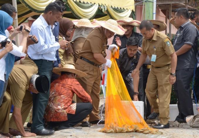 Budidaya Perikanan Air Payau Semakin Menggeliat Di Bengkalis