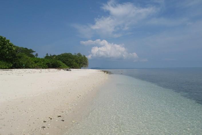 Pulau Jemur Lebih Cocok Wisata Alam Konservasi Cakaplah Berpikir Berbuat Bercakap