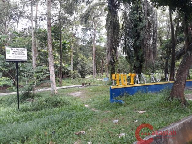 Rth Hutan Kota Di Pekanbaru Makin Tak Terawat Cakaplah Berpikir